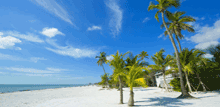 Cheap Fort Myers Car Rental Rates